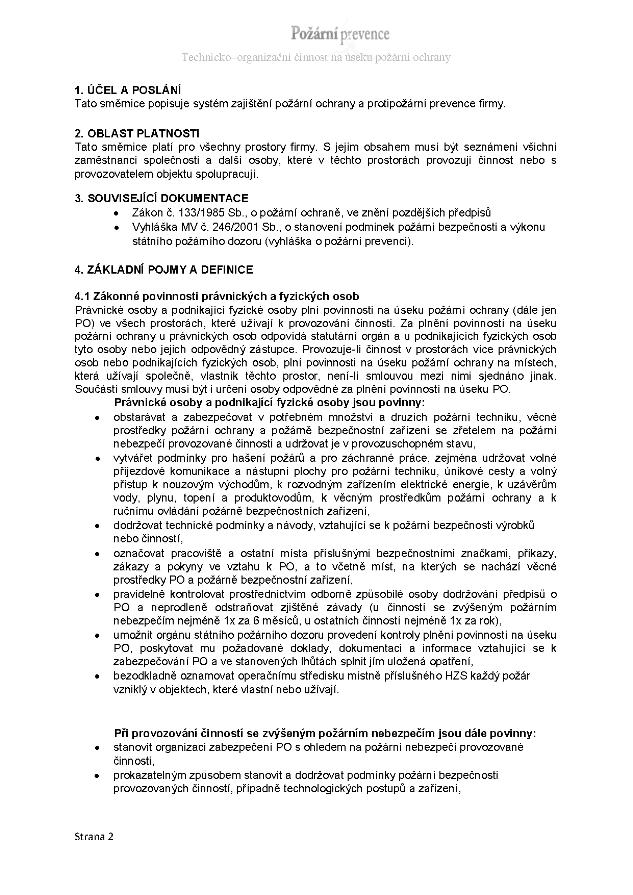 Organizační směrnice náhled